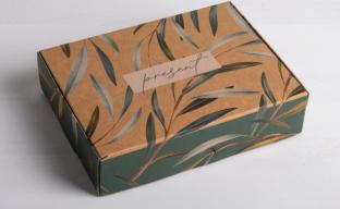 Коробка складная крафтовая Present (4789096)