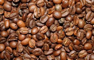 Espresso Casual