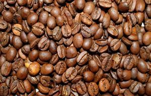 Espresso Excellent